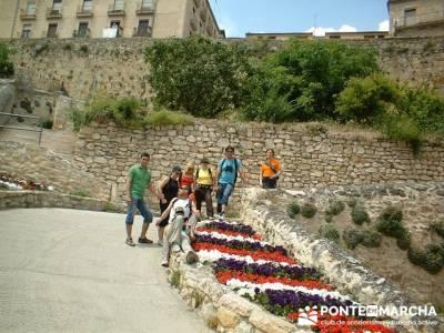 Visita guiada Sepúlveda -Hoces del Río Duratón; rutas en bici por la sierra de madrid